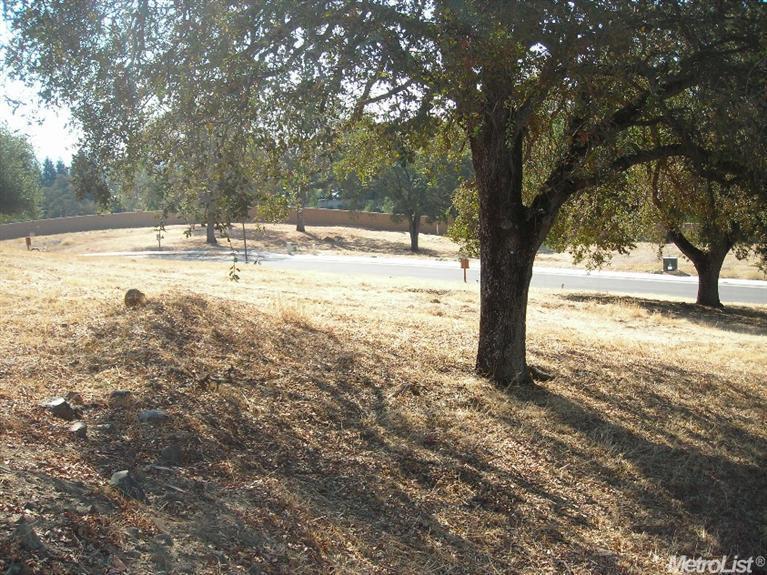 779 Lorena Lane, Folsom, CA 95630