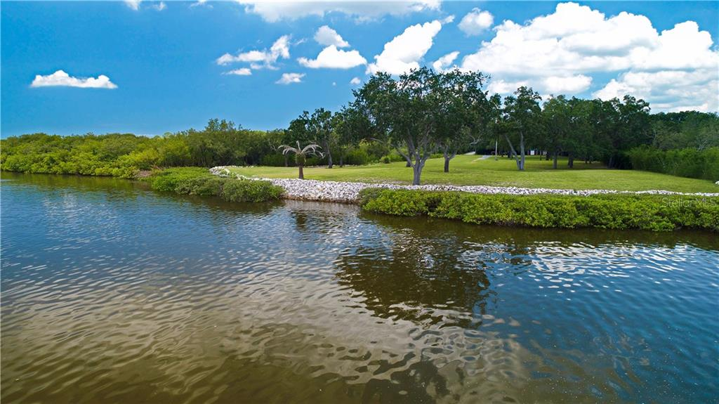 7808 Marsh Pointe, Tampa, FL 33635