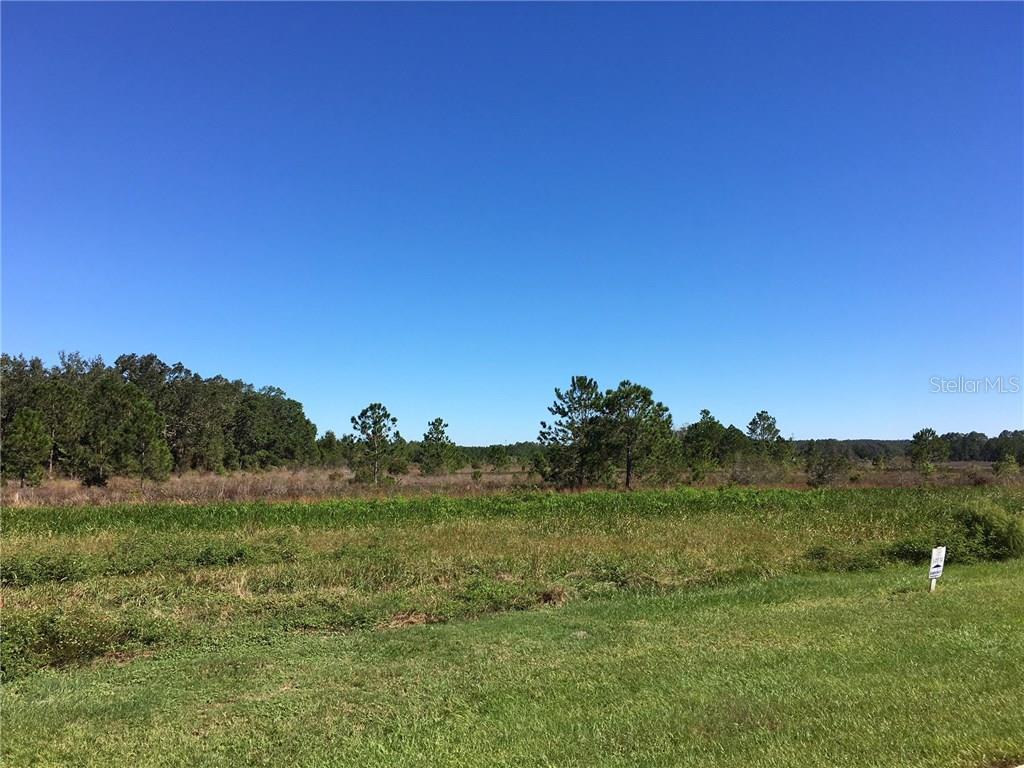 455 Long And Winding Road, Groveland, FL 34737