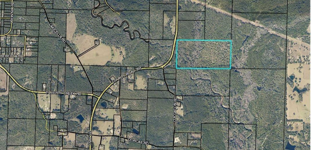 79 acres Hwy 393, Crestview, FL 32539