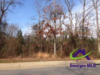 0 Lake Joy Road, Warner Robins, GA 31088