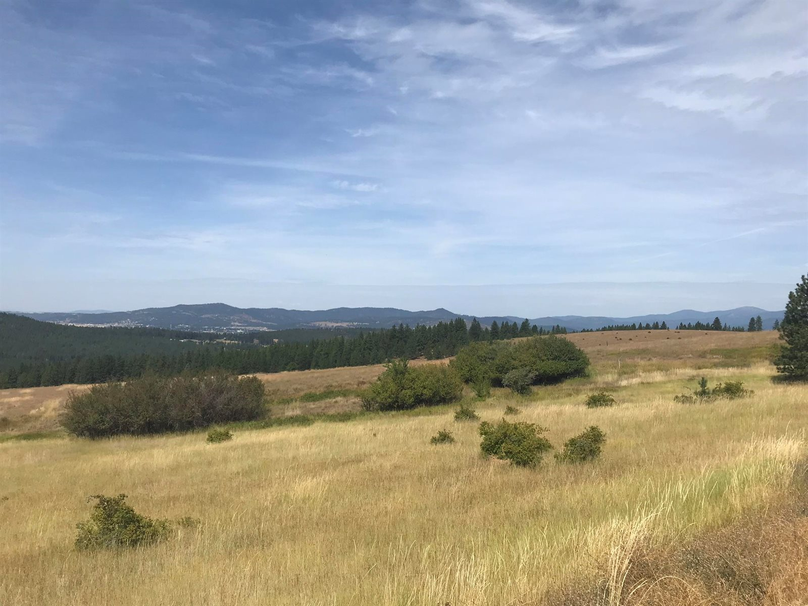 3572 South State Line Rd, Post Falls, ID 83854