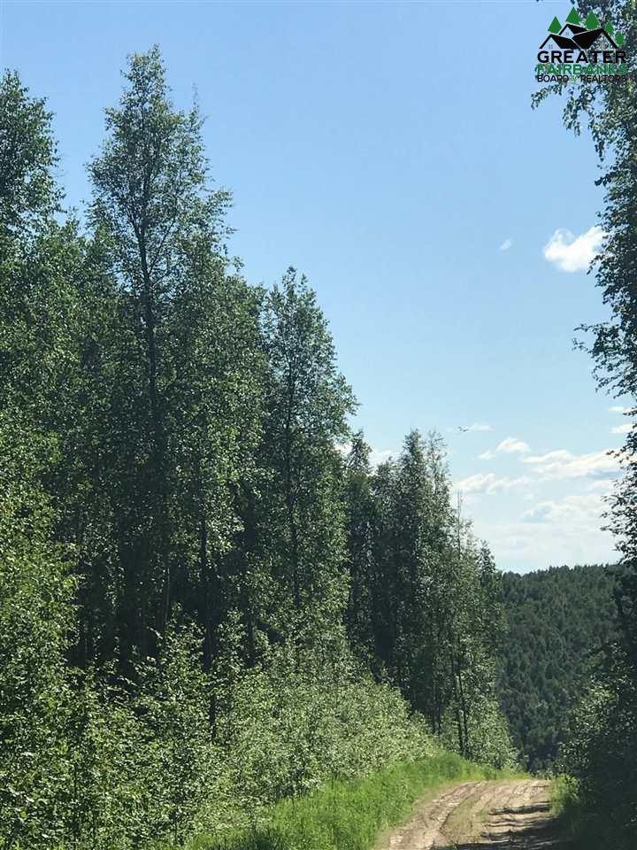 Nhn Gunning Drive, Fairbanks, AK 99712