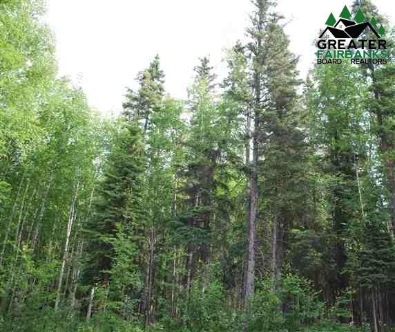 1538 North Rader Drive, Fairbanks, AK 99709