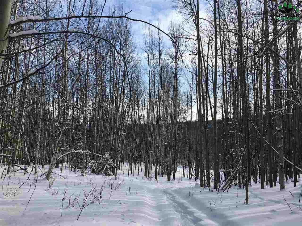 NHN Saint Patrick Road, Fairbanks, AK 99709