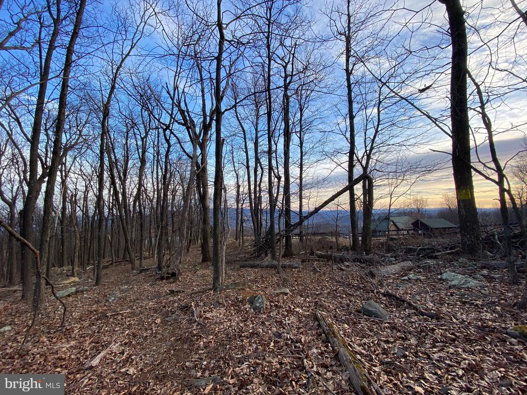 Lot 33A Salt Lick Rd, Front Royal, VA 22630