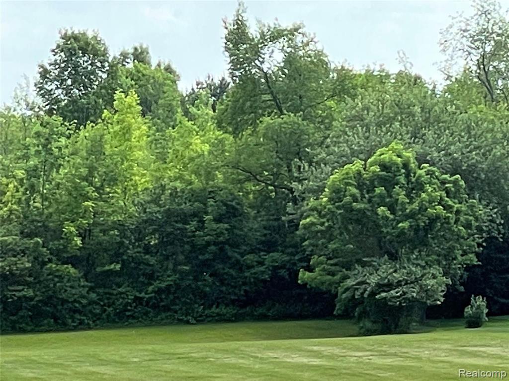 11475 Willow Wood Lane, Plymouth Township, MI 48170