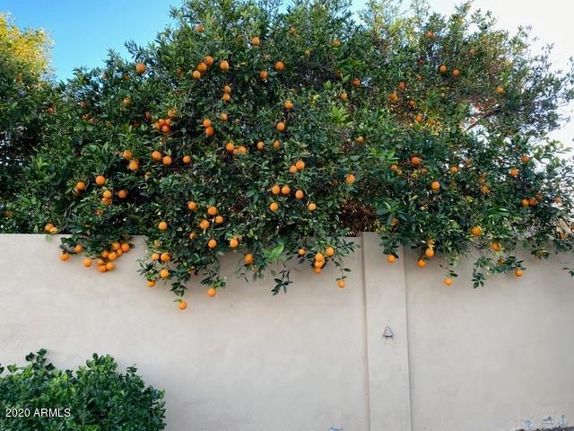 3713 East Flintlock Drive, Queen Creek, AZ 85142