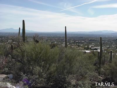 4678 East Palais Place, Tucson, AZ 85718
