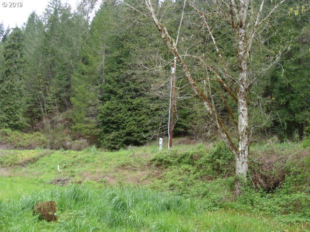 0 Upper Smith River Rd, Drain, OR 97435