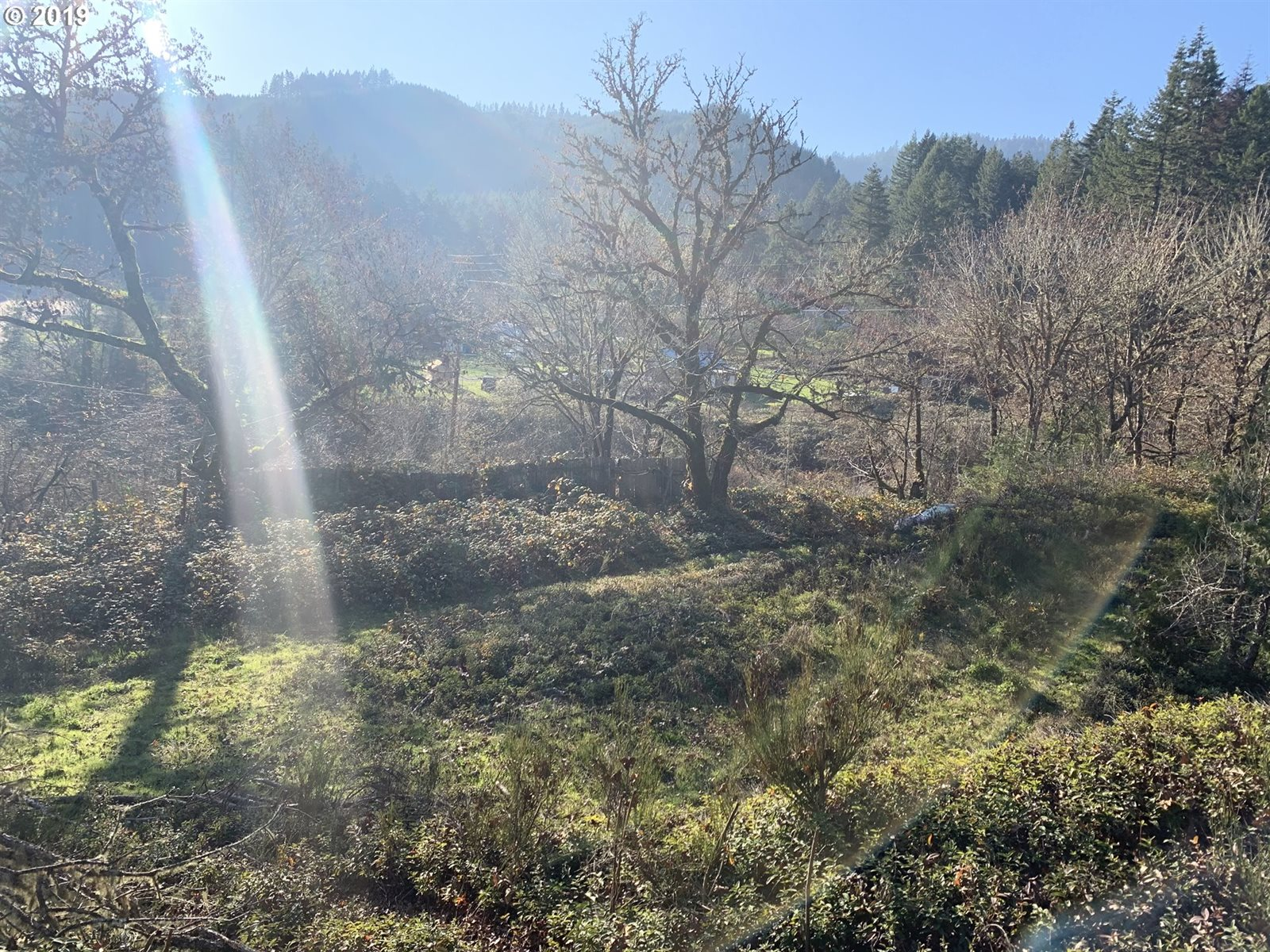 175 Upper Smith River Rd, Drain, OR 97435
