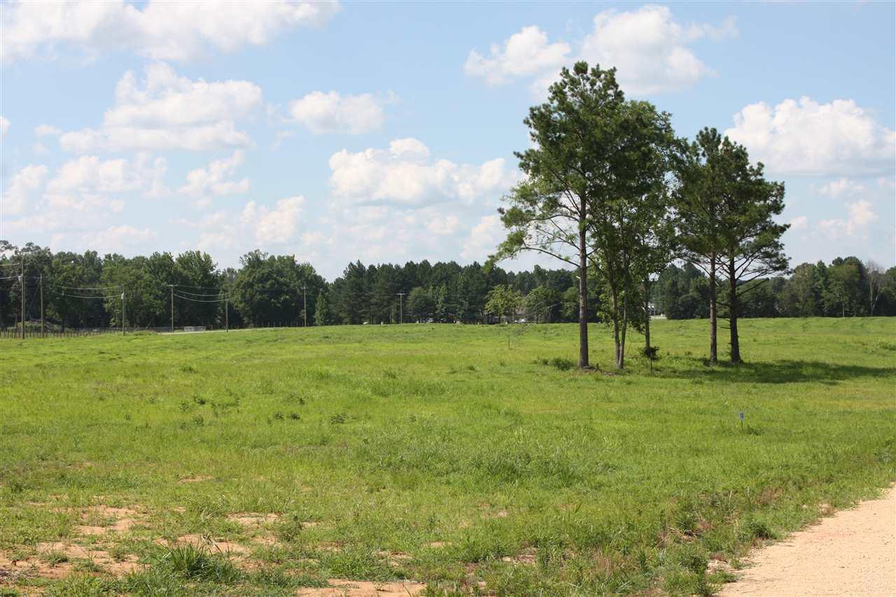 Stonehaven Drive. Lot #23, Henderson, TN 38340
