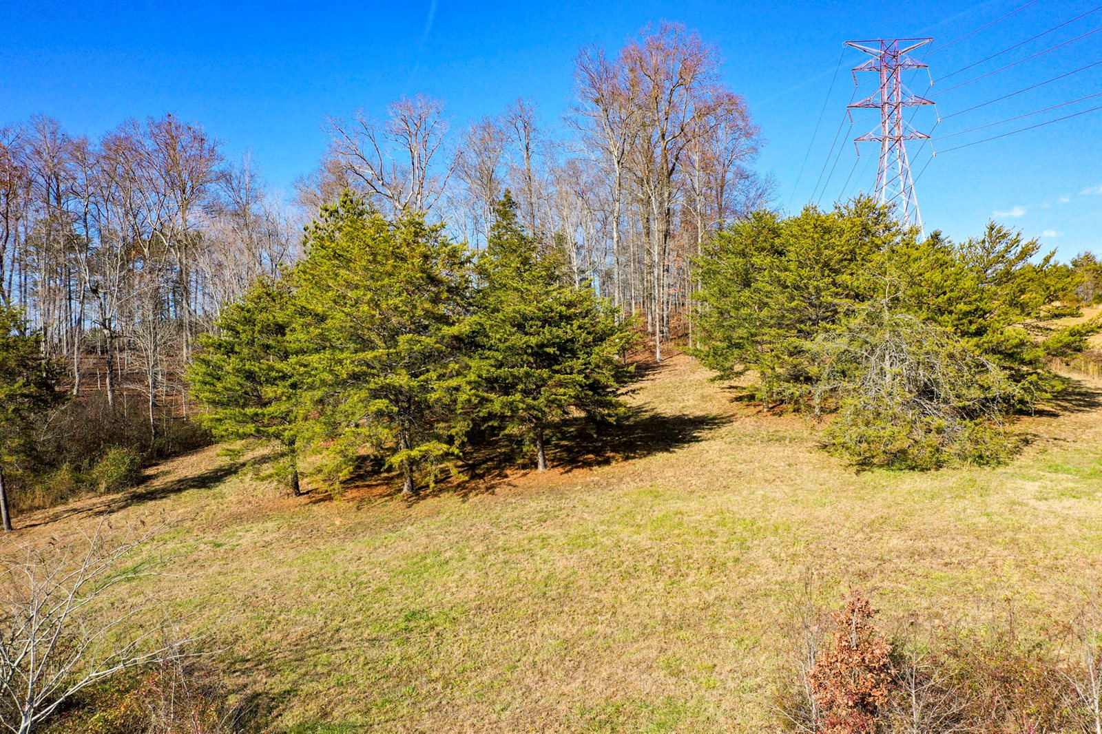 Strawberry Plains Pike, Knoxville, TN 37914