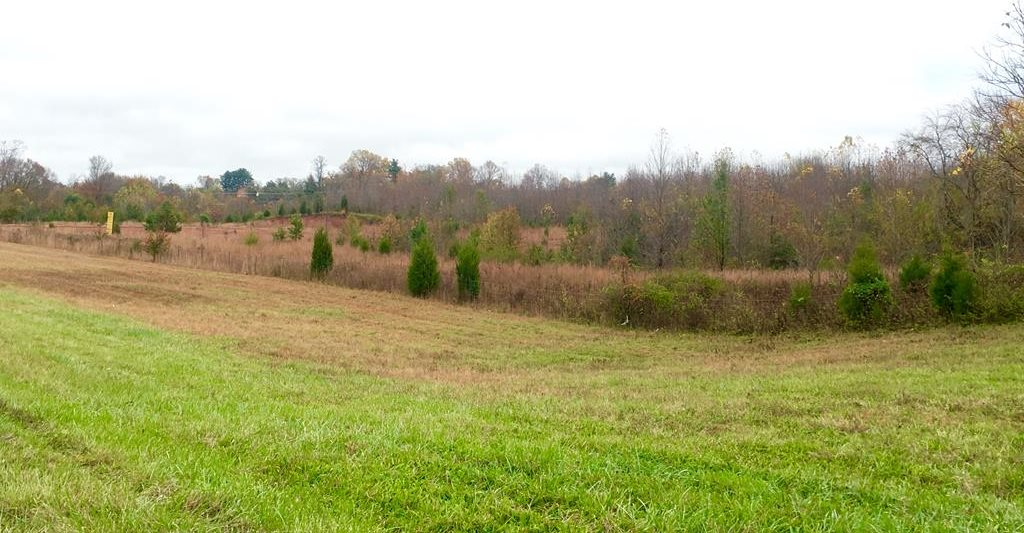 26.9 AC East Spring Street, Cookeville, TN 38501