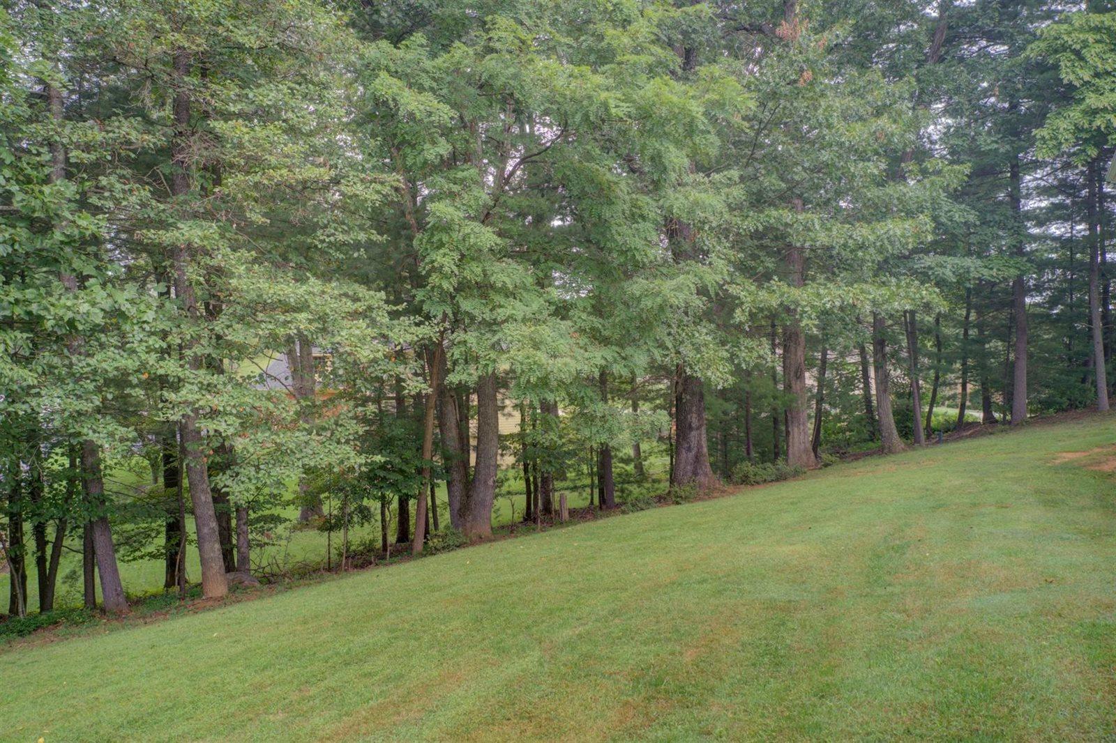 6301 Midsummer Ln, Roanoke, VA 24018