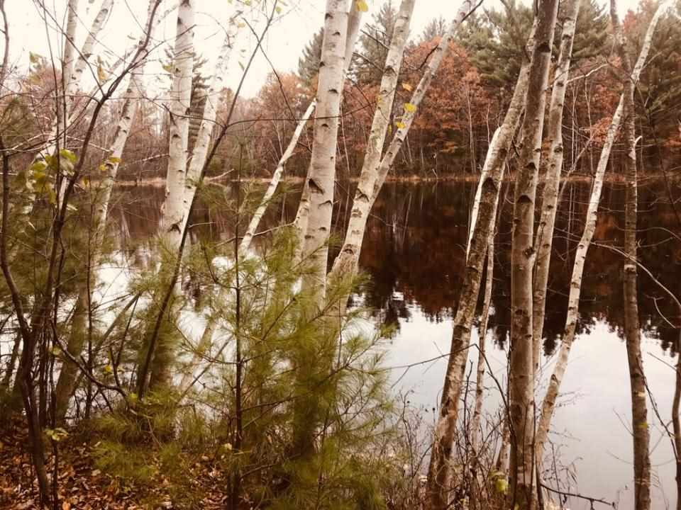 87.05 Acres STATE HIGHWAY 34 NORTH, Wisconsin Rapids, WI 54495