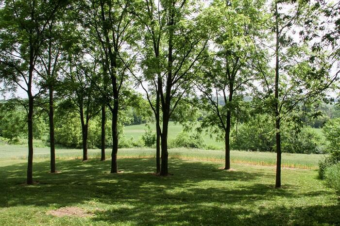 N2186 County Road D, Fort Atkinson, WI 53538