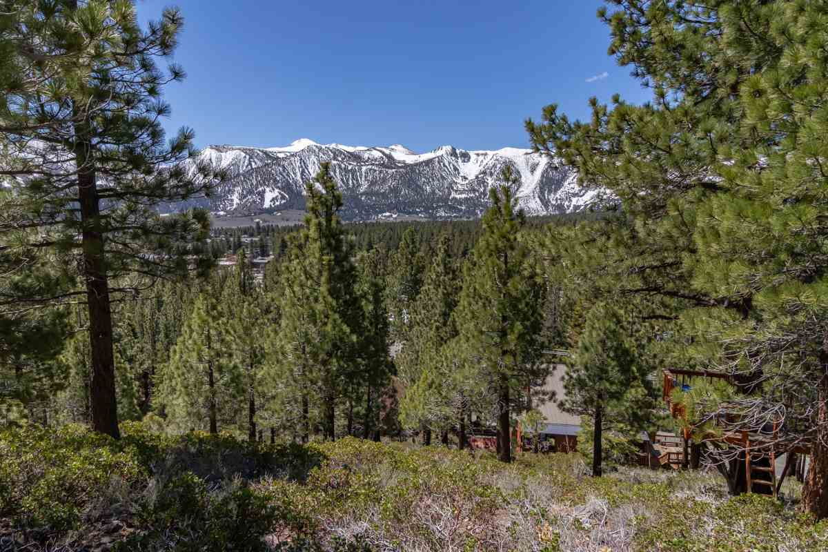 212 Forest Trail, Mammoth Lakes, CA 93546