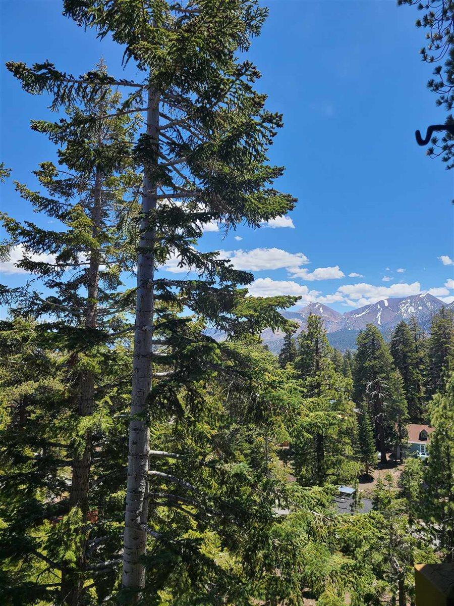 248 Mammoth Slopes Dr. #F59, Mammoth Lakes, CA 93546