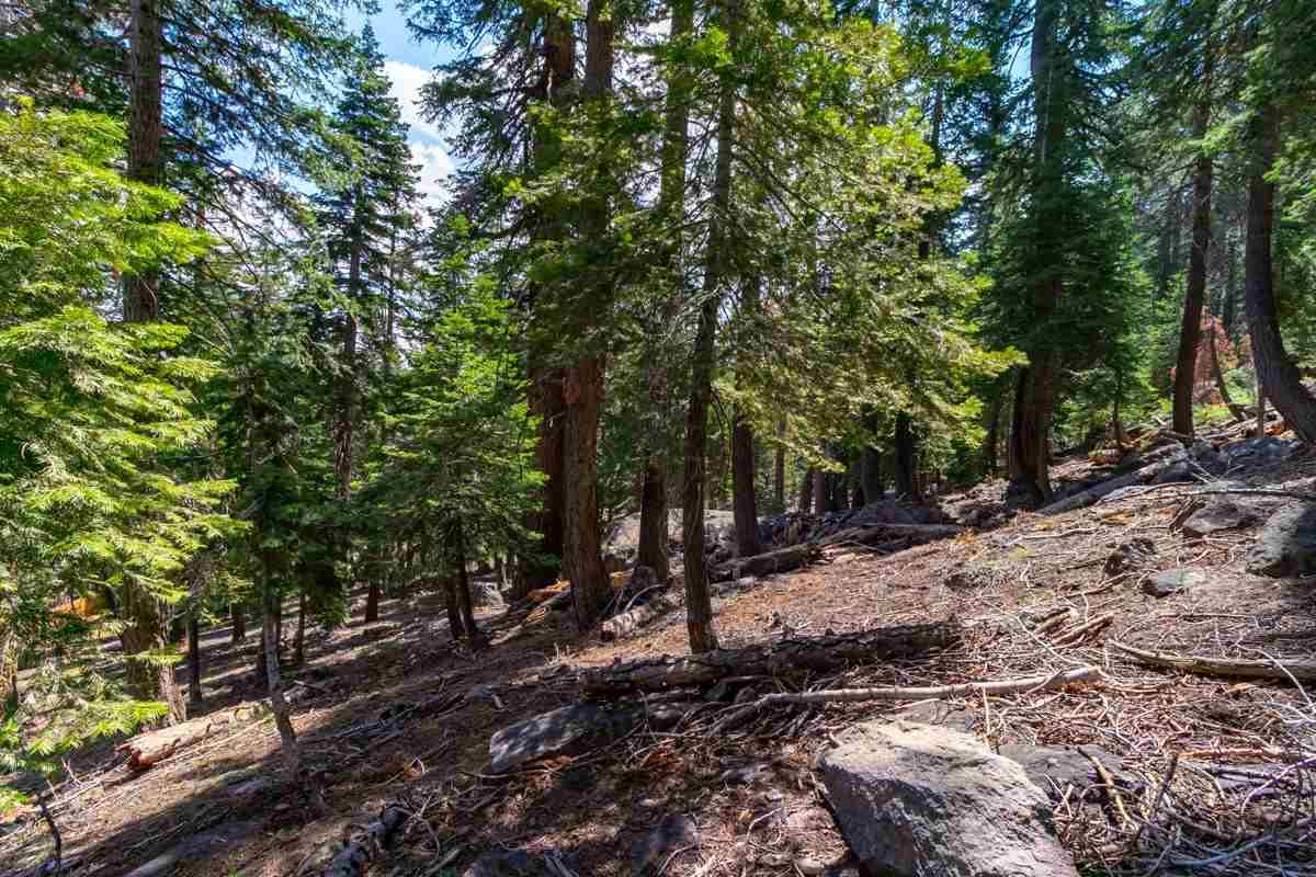 Lost Lane, Mammoth Lakes, CA 93546