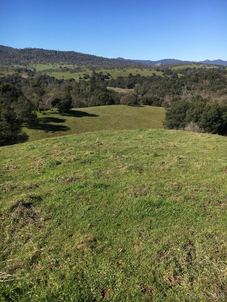 0 Cow Kick Road, #00, Angels Camp, CA 95222