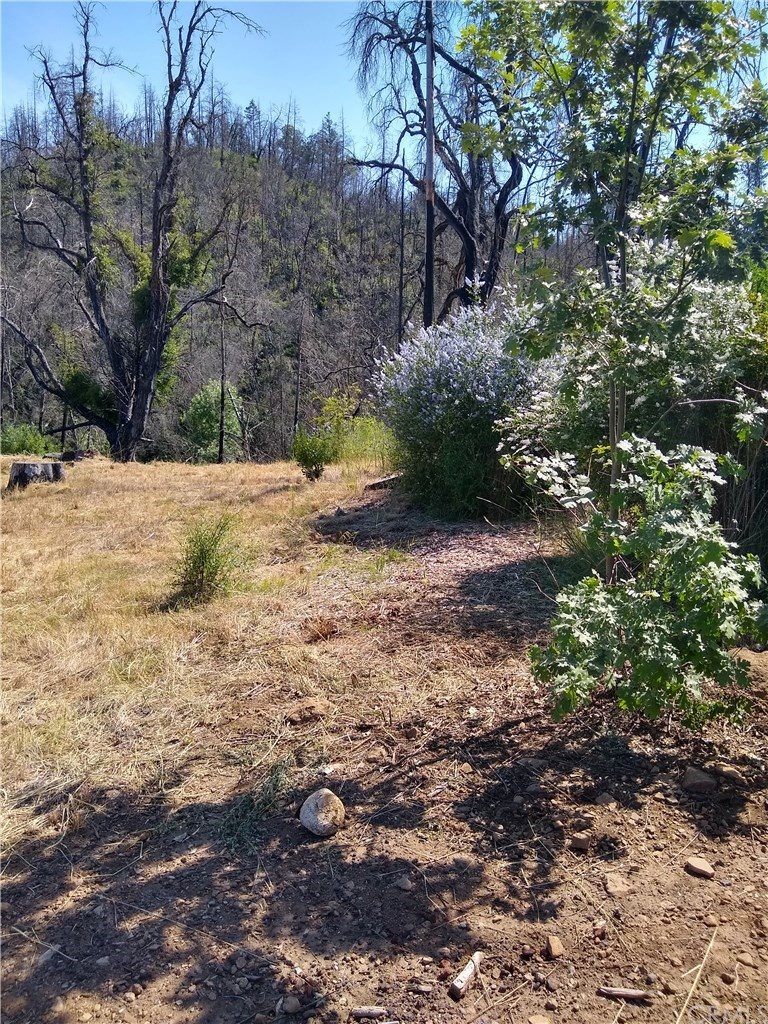 12067 Mead Road, Middletown, CA 95461