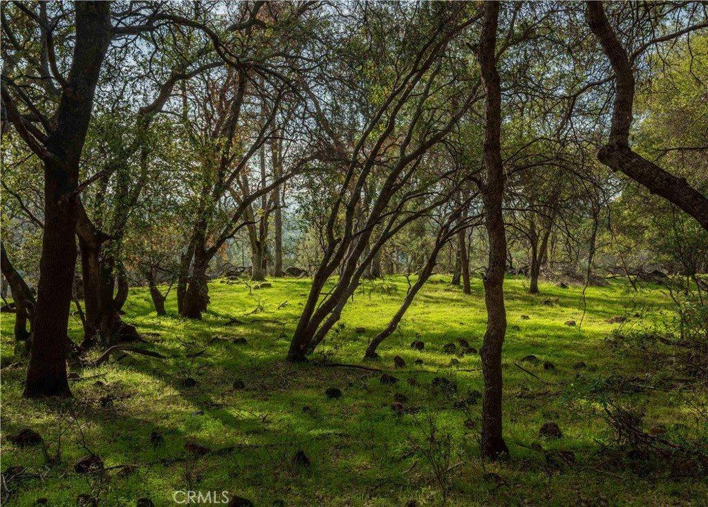 0 Richardson Springs Road, Chico, CA 95973