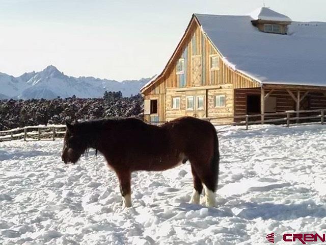 1064 Snow Bush Drive, Montrose, CO 81403