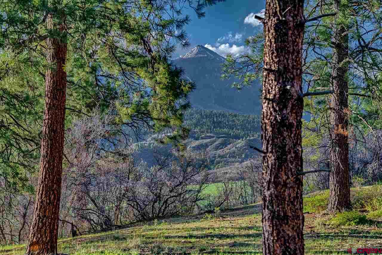 HVR_Lot2 Hidden Valley Drive, Pagosa Springs, CO 81147