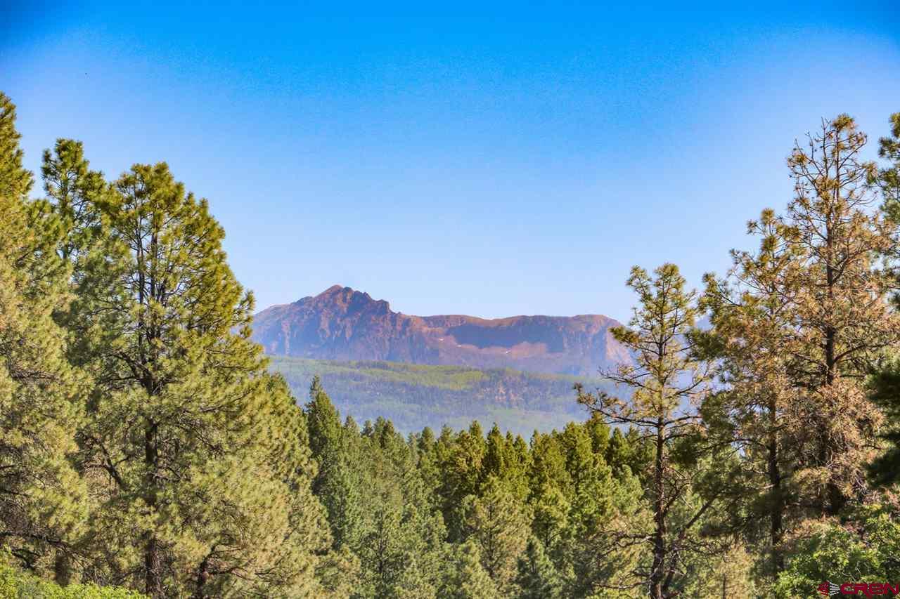 3700B County Road 600, Pagosa Springs, CO 81147