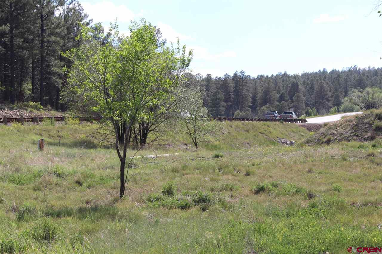 tbd W HWY 160, Pagosa Springs, CO 81147