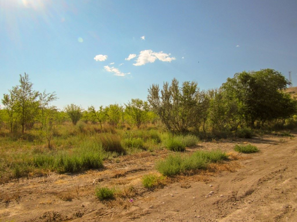 2650 B 1/2 Road, Grand Junction, CO 81503