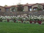 10001 Woodcreek Oaks Boulevard, #513, Roseville, CA 95747