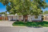 713 Vine Avenue, Roseville, CA 95678