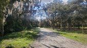 699 Chase Hammock Road, Merritt Island, FL 32953