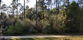 25 Ac West Dogwood Drive, Crestview, FL 32536