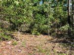 3.25 ac. Pine Cone Trail, Crestview, FL 32539
