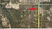 0 Mt Olive Road, Lot 10, Crestview, FL 32539