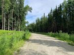 Nhn Whistling Swan Drive, Fairbanks, AK 99712
