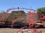 5269 West Encanto Paseo Drive, Queen Creek, AZ 85142