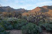 8400 East Remount Place, Tucson, AZ 85750