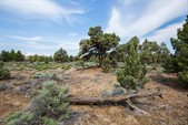 23146 Switchback Court, Lot 102, Bend, OR 97701