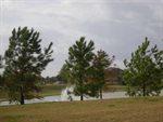 14411 Cypress Links Trail, Cypress, TX 77429
