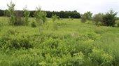 1.3 acres APPLE ROAD, Wisconsin Rapids, WI 54495