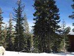 368 John Muir Road, Mammoth Lakes, CA 93546
