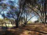 289 Blair Mine Road Road, Angels Camp, CA 95222