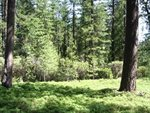 2568 Aspen Way, Arnold, CA 95223