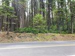 857 Highway 4, Arnold, CA 95223