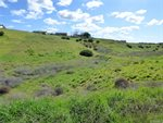 5910 Forked Horn Place, Paso Robles, CA 93446