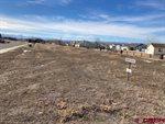 Lot 2607 Bear Lake Drive, Montrose, CO 81401